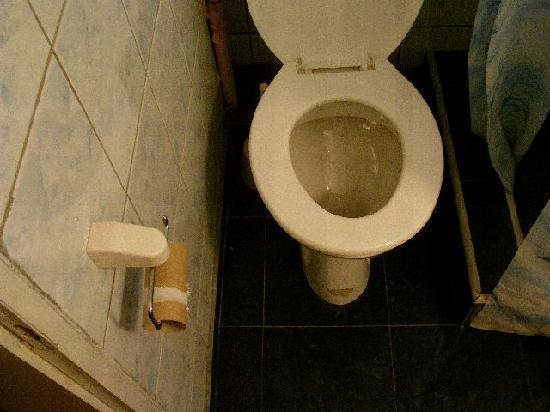 Hotel Ani : toilet