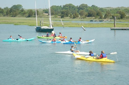 Miss Chris Marina and Kayaks : Kayaking the calm waters of Cape Island Creek
