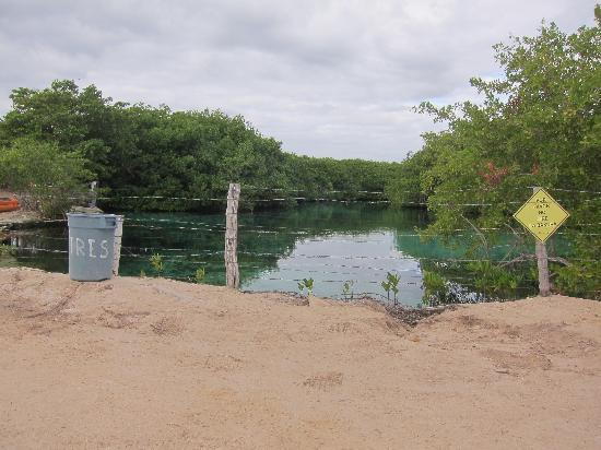 Blue Sky Hotel: nearby Cenote - not very inviting, but here it is good snorkeling