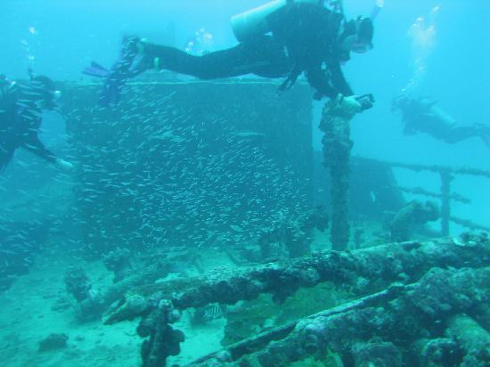 Red Sail Sports Aruba: Checking out a Wreck