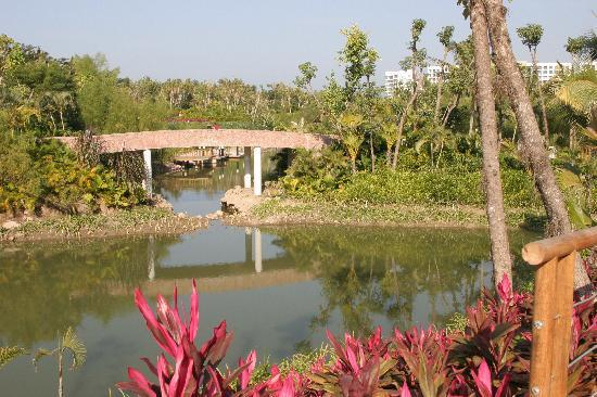 Mayan Palace at Vidanta Nuevo Vallarta: lake and grounds