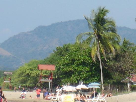 Tamarindo Blue Apartments: Tamarindo beach