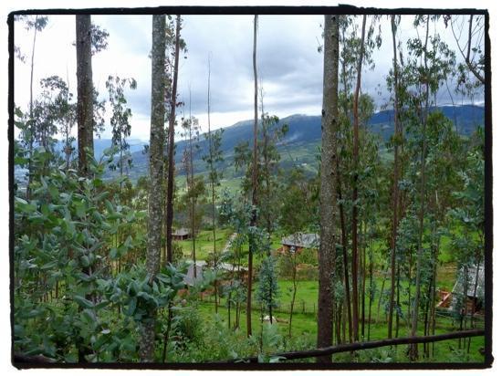 Ali Shungu Mountaintop Lodge: randonnée au haut du lodge