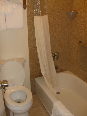 Best Western Tradewinds: Nice and new bathroom