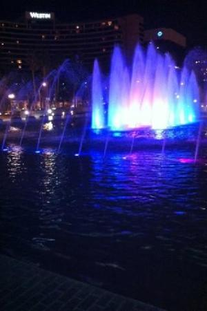 The Plaza Fountains at Night