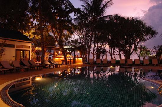 patong bay garden hotel reviews. patong bay garden resort: night theme hotel reviews