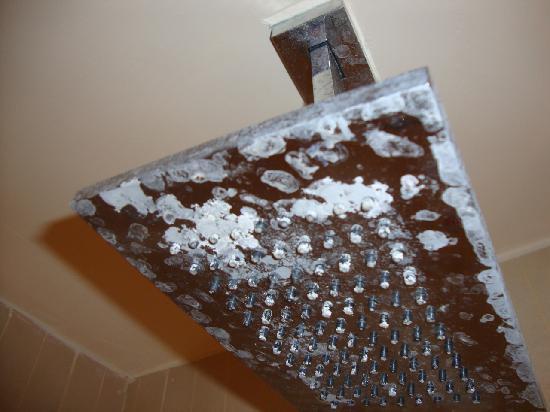 Soffione doccia foto di venetia palace hotel roma - Dove posizionare soffione doccia ...