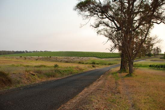 The Road Less Travelled Wine Tours: Back Roads 2