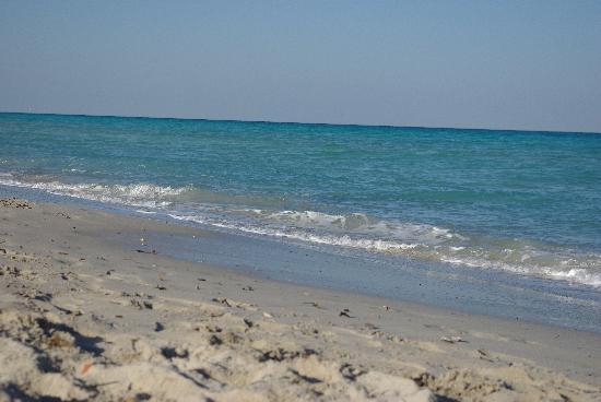 SENTIDO Djerba Beach: plage de l'hotel