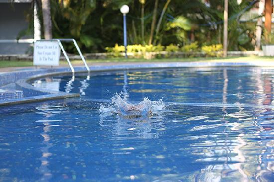 Akhil Beach Resort: The pool at Preeth hotel