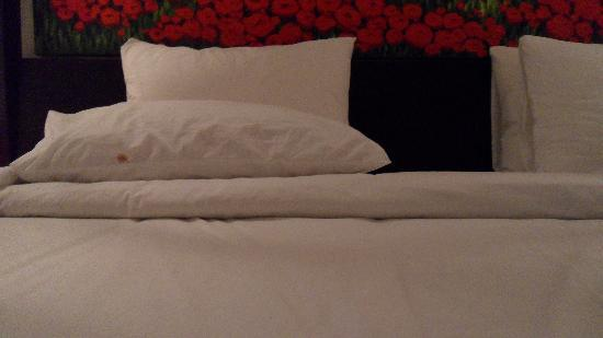 Amor Bali Villa: blood stain? on the pillow...we left it there over night to see if it would be changed, but it w