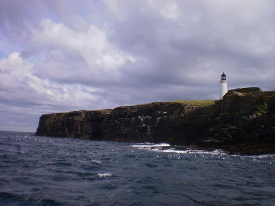 Pettlandssker Boat Trips - Day Trips: The island is home to a light-house