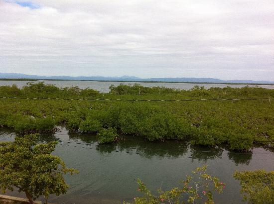 Three Iguanas Villa: Mangroves to mountains view.
