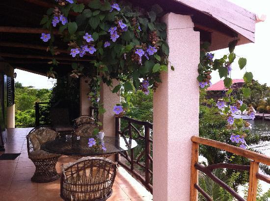 Three Iguanas Villa: Wonderful patio!