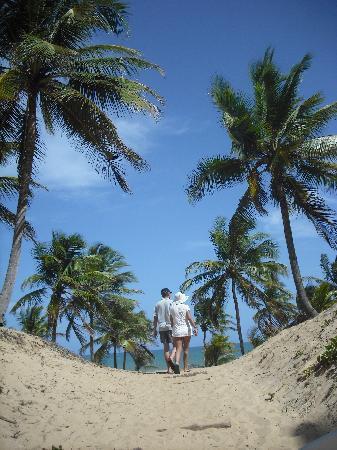 Grand Palladium Imbassai Resort & Spa : Acceso a la playa