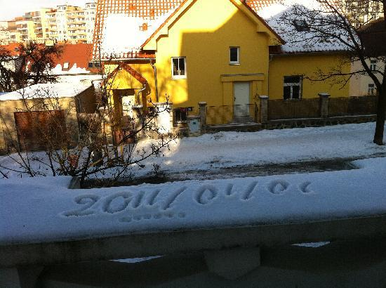 Lida Guest House: New Year