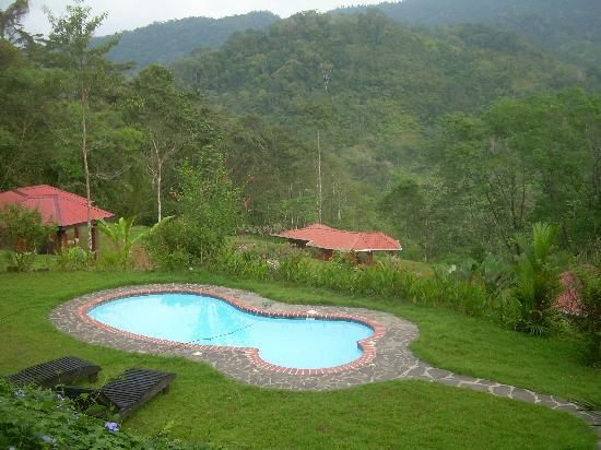La Cacatua Lodge: la piscina