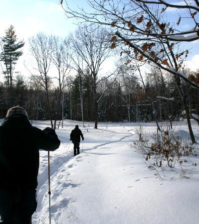 D Acres of New Hampshire: Enjoying the Property Trails