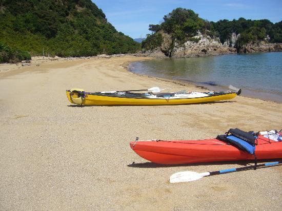 Golden Bay Kayaks: Morning tea stop