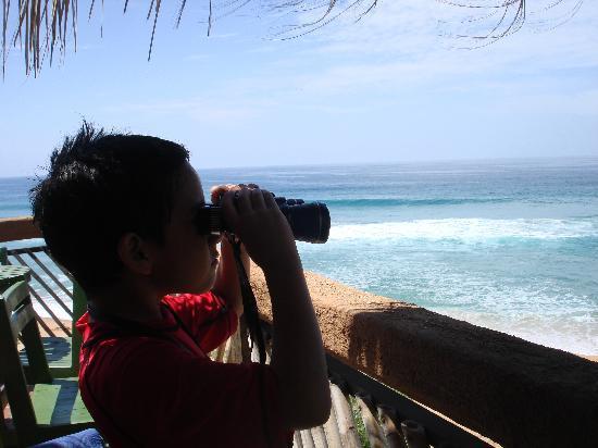 La Mora Posada: vista desde la terraza, genial de verdad