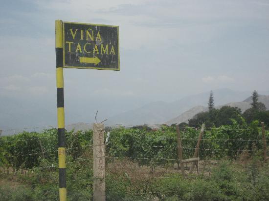 Signs for Tacama