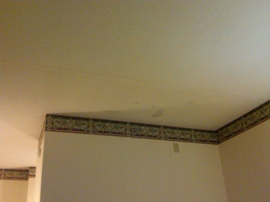 Days Inn & Suites Murfreesboro: Water stains on ceiling.