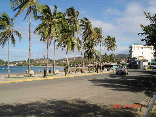 The Secret Cove Inn: Along beach road 4 minute walk from Inn