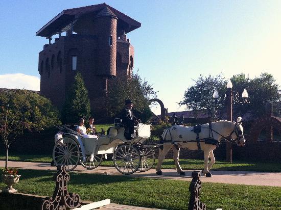 Castle Unicorn: Bride and Groom