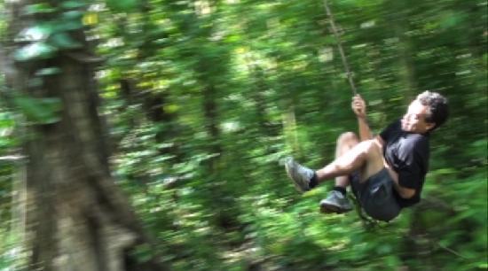 Manoa Falls: natural attractions!