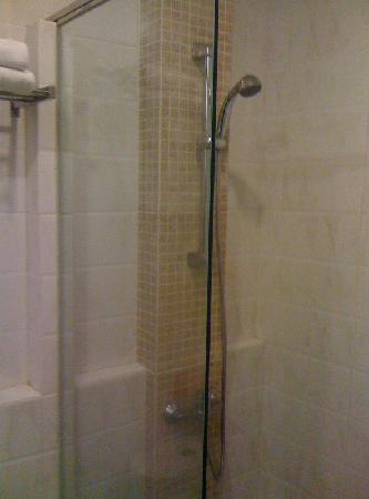 Prasada Mansion: The shower room