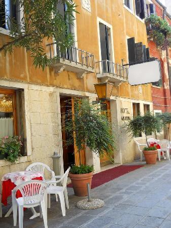 Hotel Guerrini : hotel