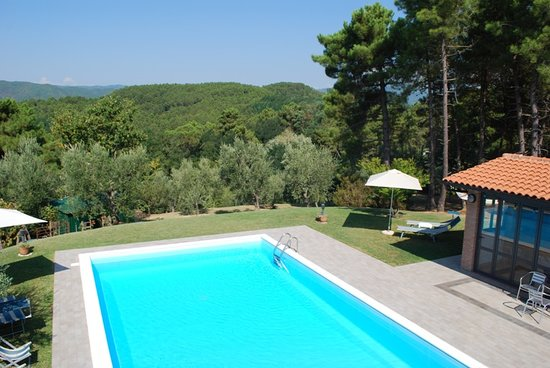 Podere Fioretto : a view from swimming pool