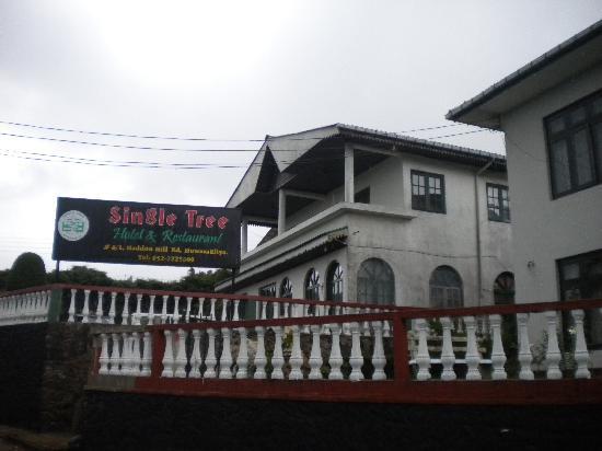 Single Tree Hotel: ingresso