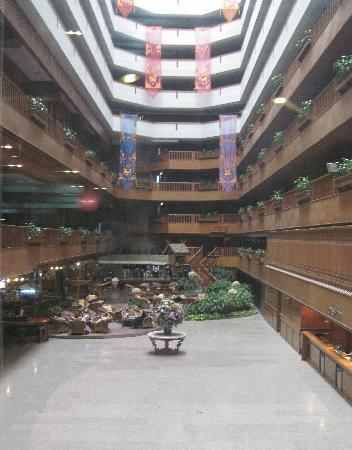view from Lobby (Empty)