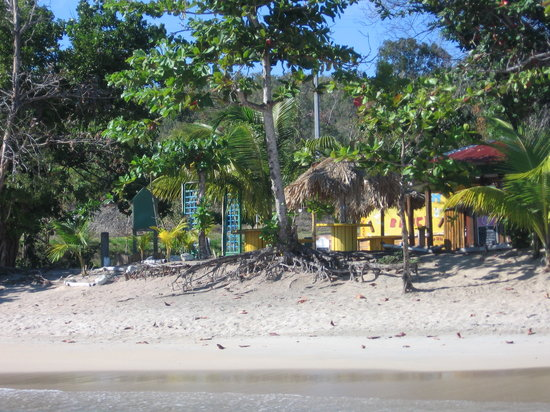 Le Tam Tam Beach : le TAM TAM sous les ombrages