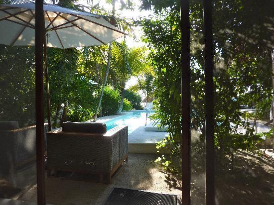 Hotel Jashita: Blick vom Restaurant zum Garten