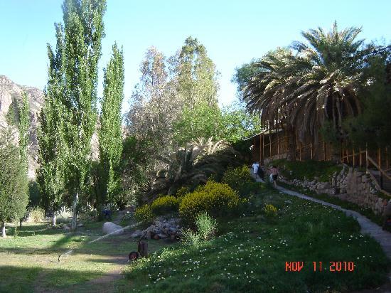 Hotel & Spa Termas Cacheuta: Parque 2