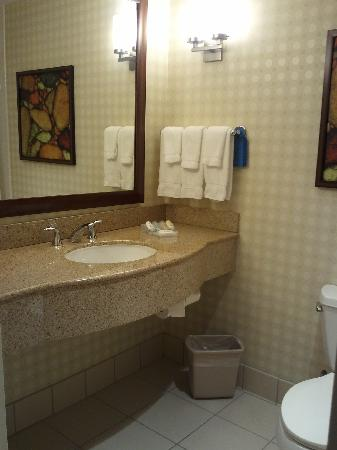 Hilton Garden Inn Houston Energy Corridor: King Evolution Suite Bathroom