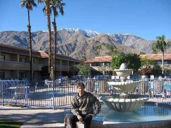 The Garden Vista Hotel Palm Springs: What a great View..