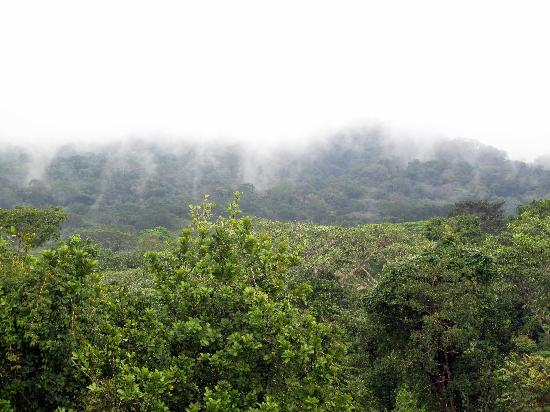 Sendero Panama Tours: Canal watershed