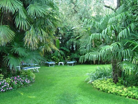 Hotel 4 Stagioni: Palmengarten