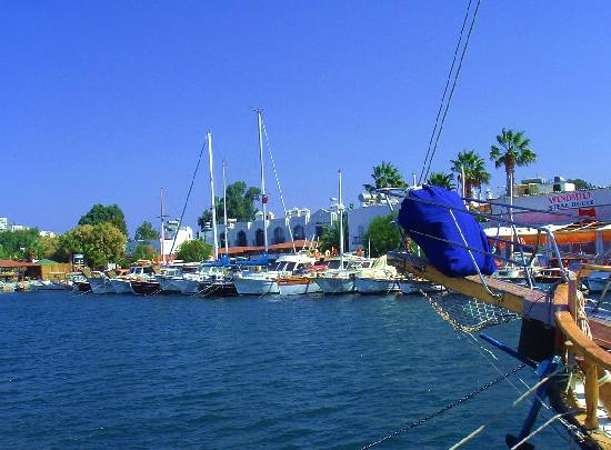 Yalikavak, Turkije: The Harbour