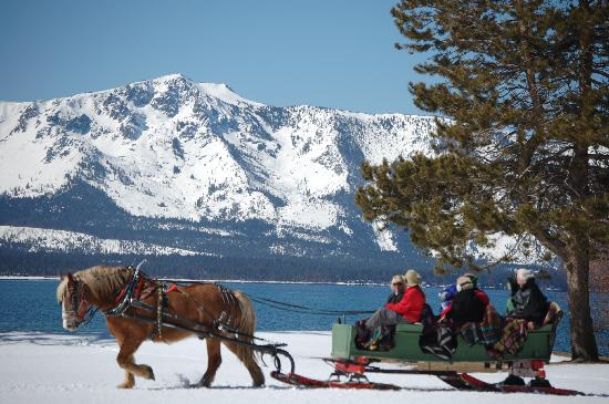 South Lake Tahoe, Californië: Borges Sleigh Rides