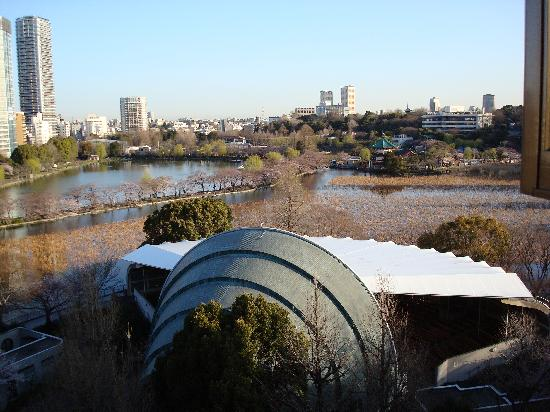 Hotel Park Side : View of Ueno Park from my room.