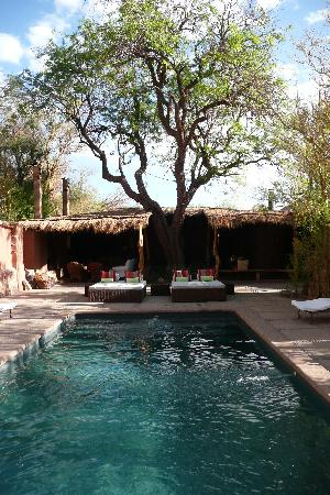 Awasi Atacama - Relais & Chateaux: The pool area