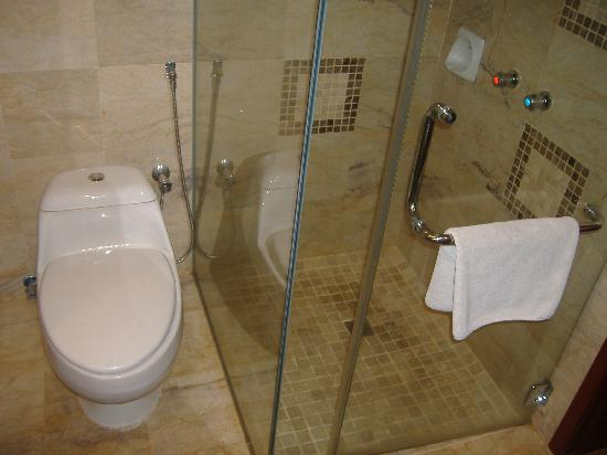 Grand Riverview Hotel: Toilet and shower areas