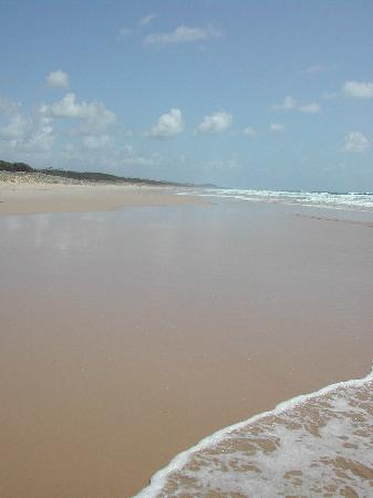 Glen Eden Beach Resort: Beach