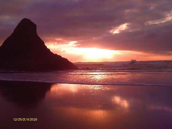 Image result for karekare beach
