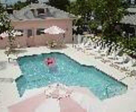 East Shore Resort Apartment Motel Thumbnail
