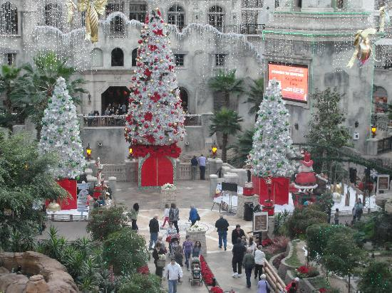 gaylord texan resort convention center the atrium decorated for christmas